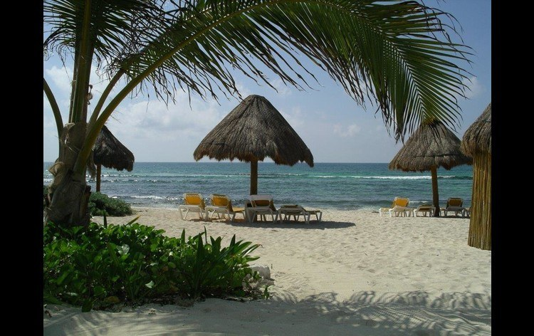 Most Properties are right on the Beach Enjoy your Palapa